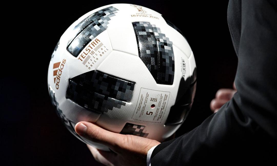 Cani randagi massacrati a Taghazout: problema per i Mondiali di calcio del 2026